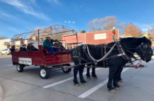 Picture of Sleigh Rides at Christmas at the Dells 2017
